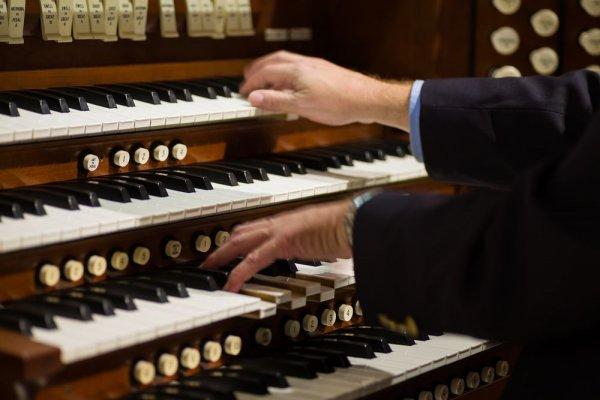 Organist Church